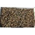 Breeding set Biodar STANDARD with 700 cocoons of osmia rufa / bicornis